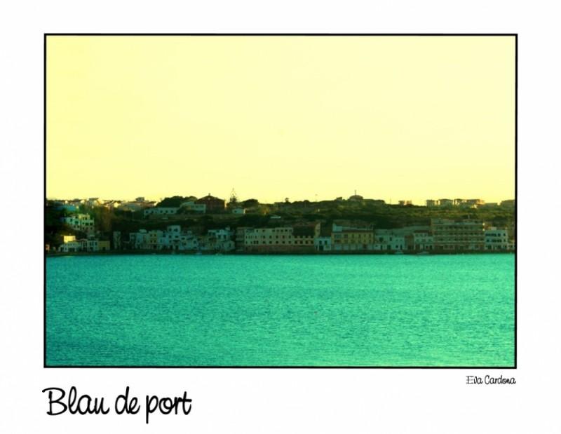 Blau port
