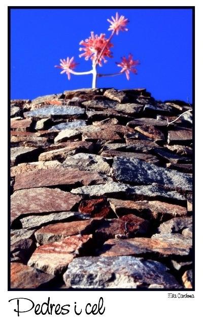 Pedres i cel