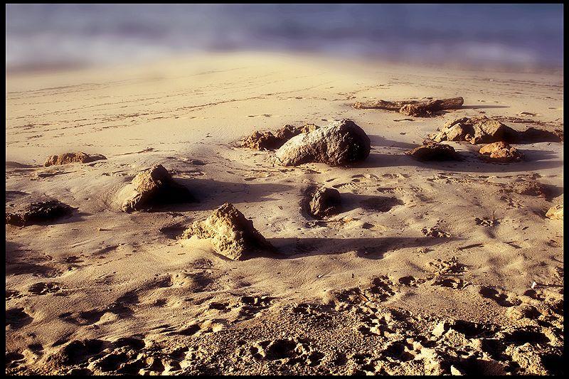 Roca·mar