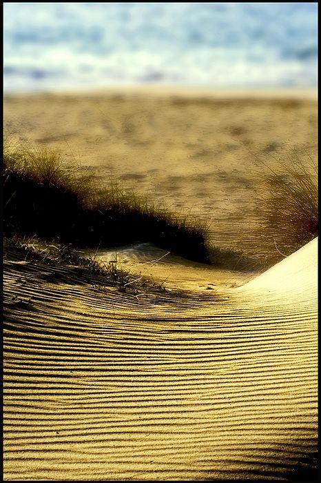 D'una duna