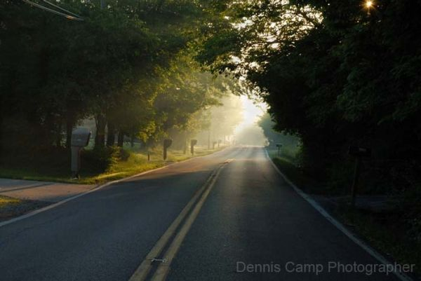 Tealtown Morning