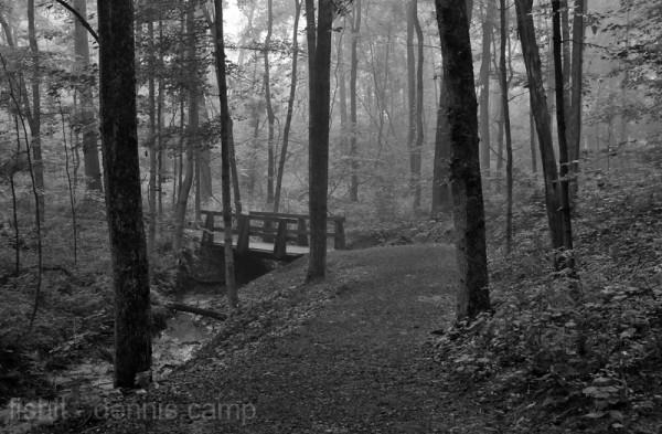 Woodlands Trail Bridge