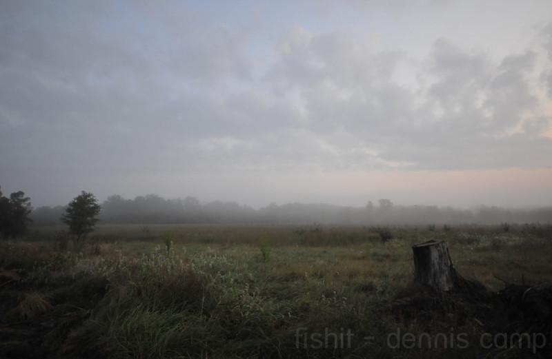 Tealtown Nature Preserve Fields