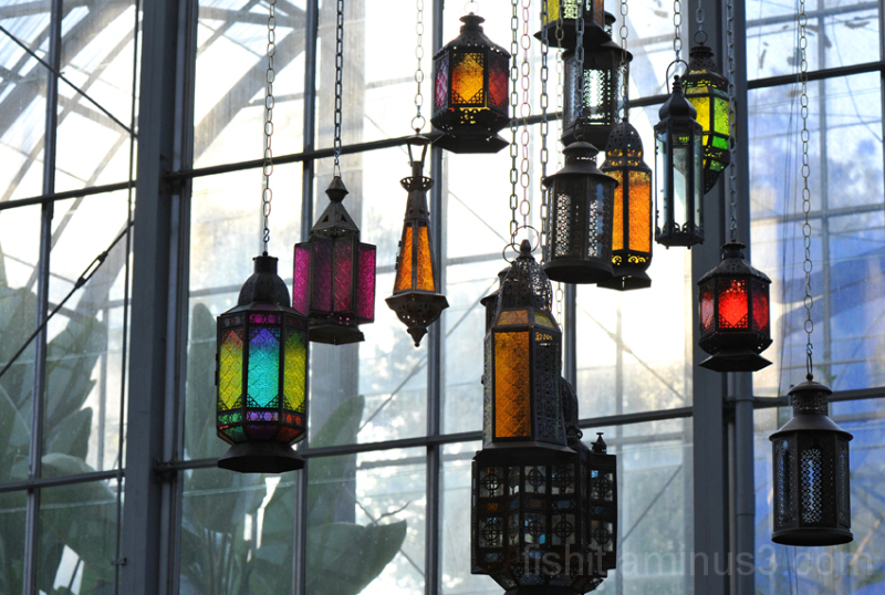 Lanterns of Krohn Conservatory