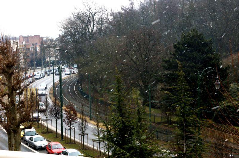 Snowing in Brussels