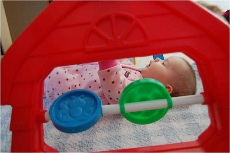 Baby through the play gym