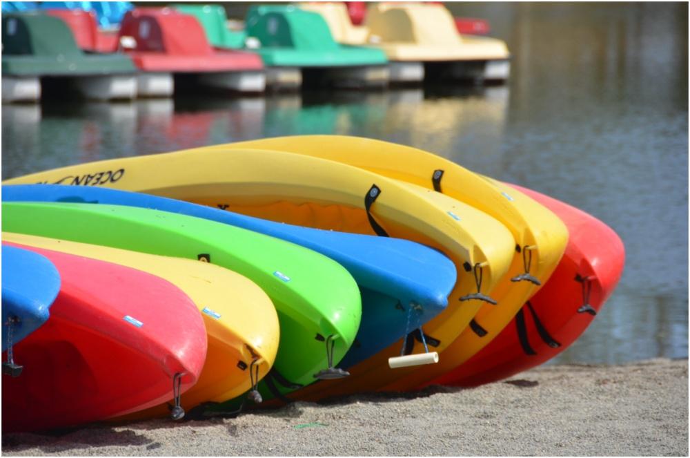 Row of kayaks