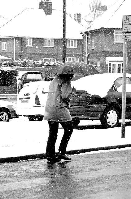 Snow Day 6
