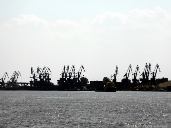 Girafele din port. by cellinux
