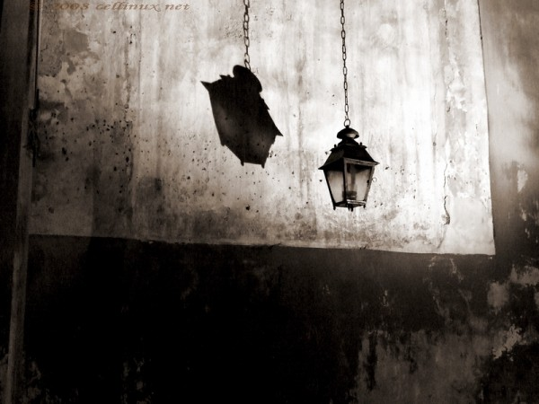shadow hanging by cellinux
