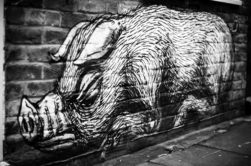 Roa | Brick Lane