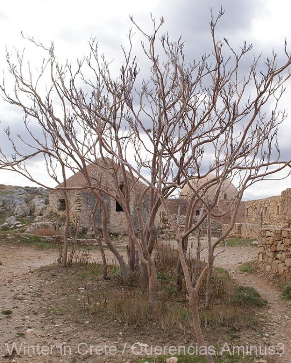 La Fortezza, Rethymno. Crete