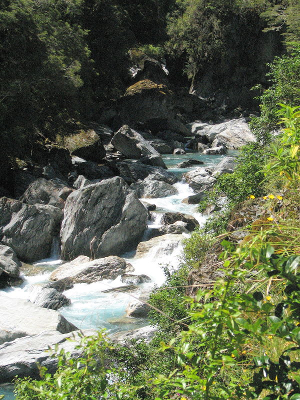 Haast river gorge