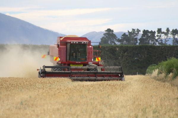 Harvest III