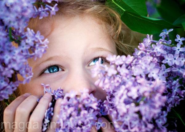 We Love Lilacs