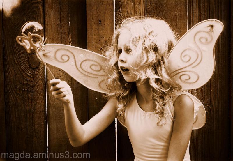 Fairy Bubbles (3)