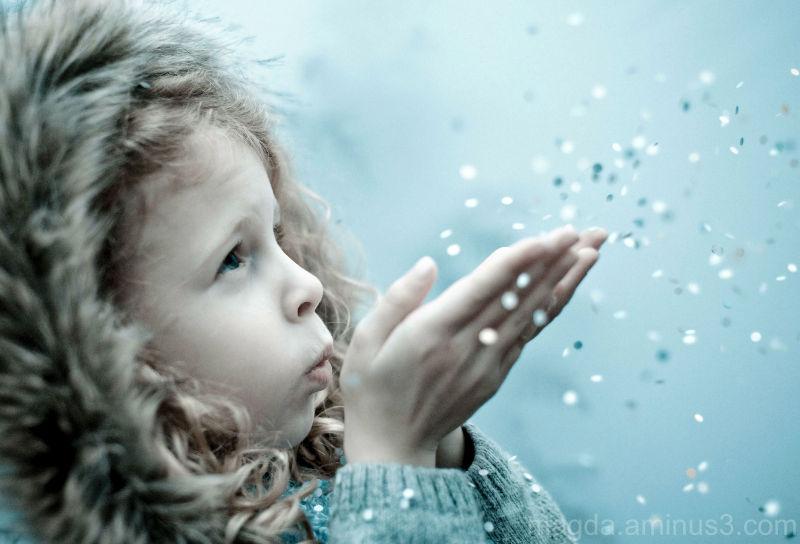 Winter Wish