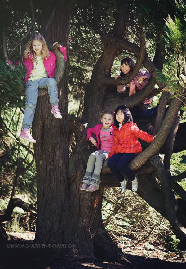 'Monkeys' In A Tree :)