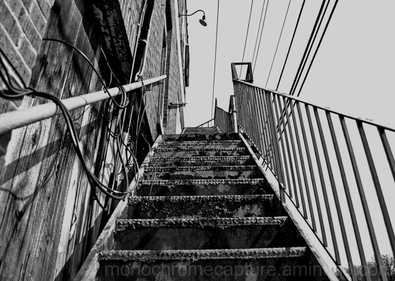 urban, city, stairs, monochrome, black and white
