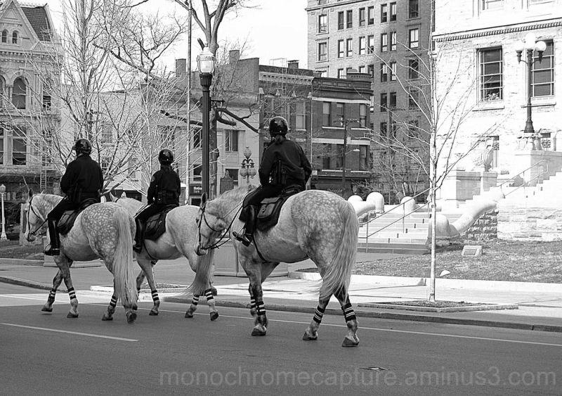 Lexington Horse Patrol