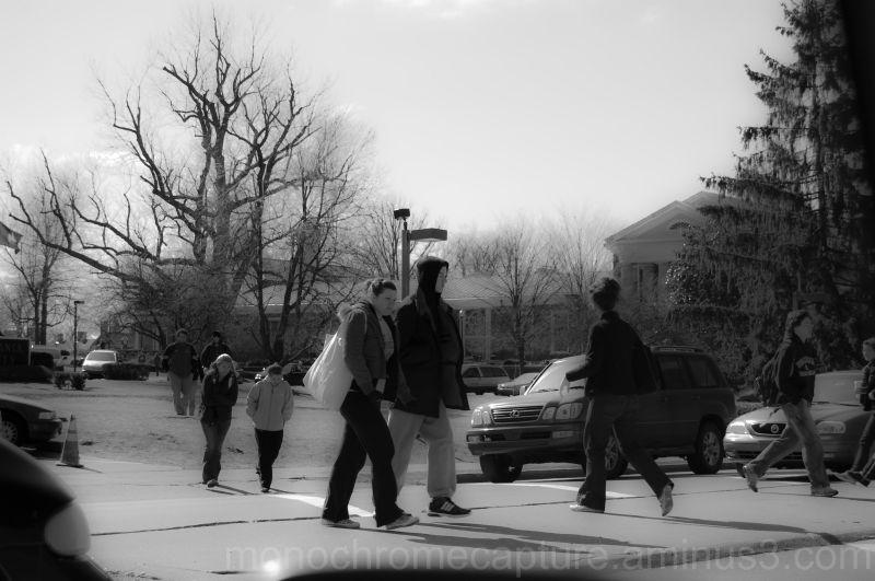 Transylvania, university, monochrome, Lexington, K