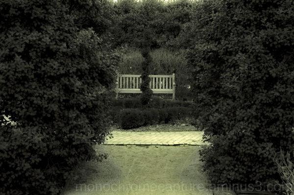 U.K. Arboretum