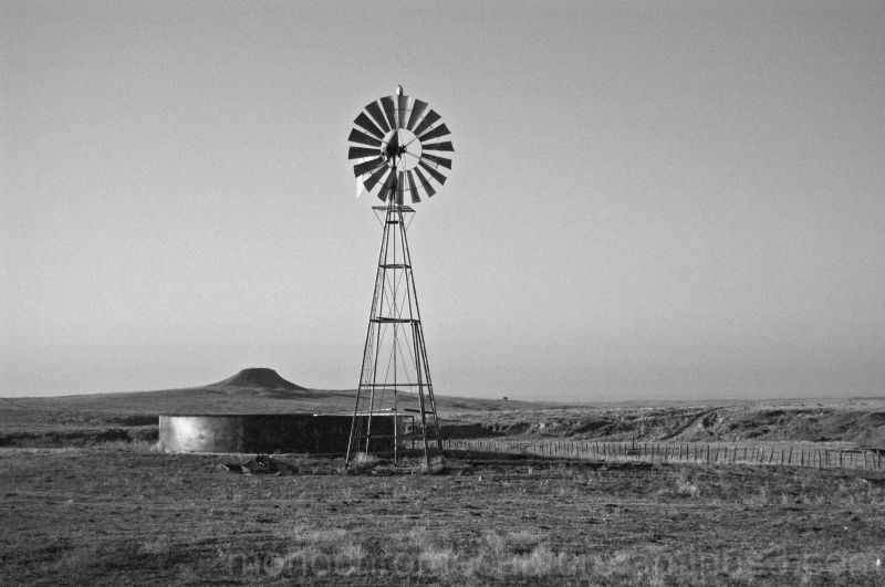 Windmill in the Panhandle of TX