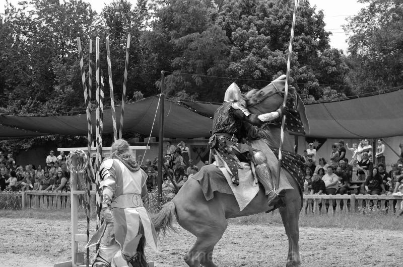Scarborough Fair - 2012 - Horse Problems