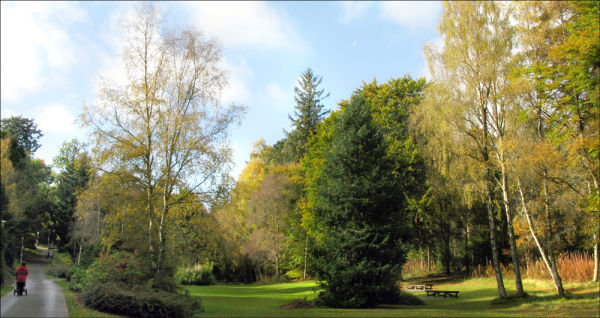Going home - Haughton Park