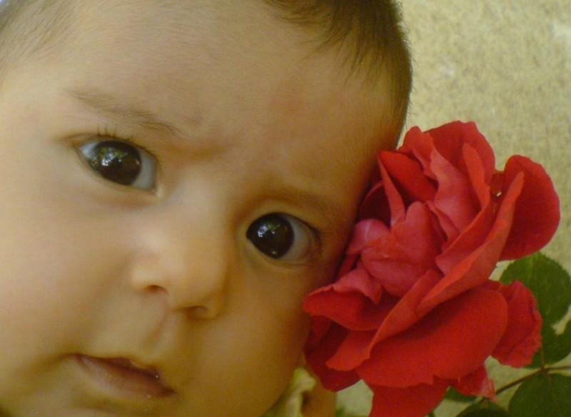 rojina & flower