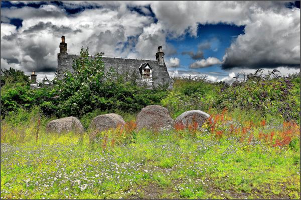 Near Balmarino Village, Fife, Scotland