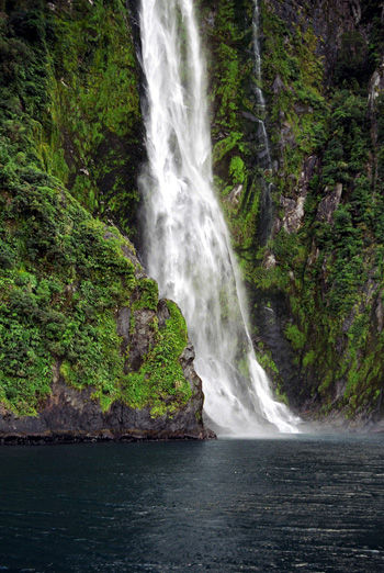 Sterling Falls in Milford Sound New Zealand