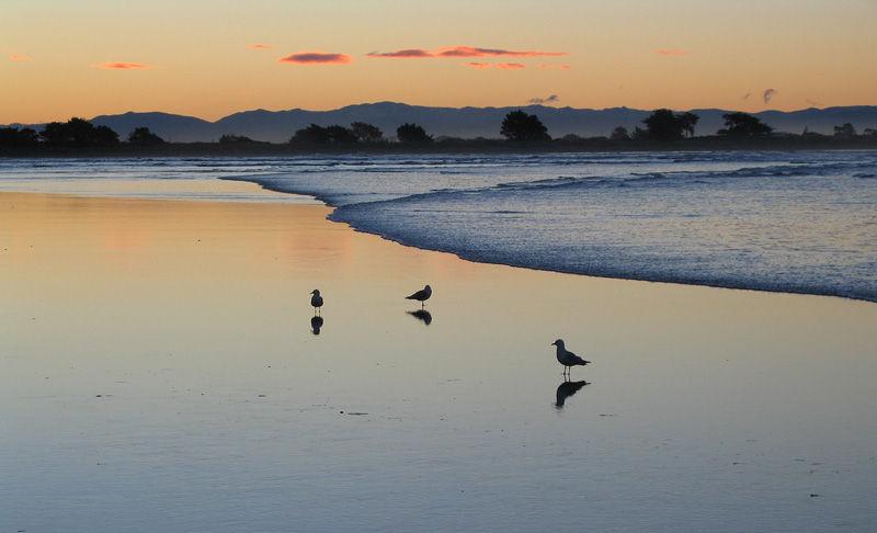 Sumner Beach New Zealand