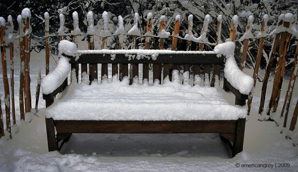 Snow 5 : Bench
