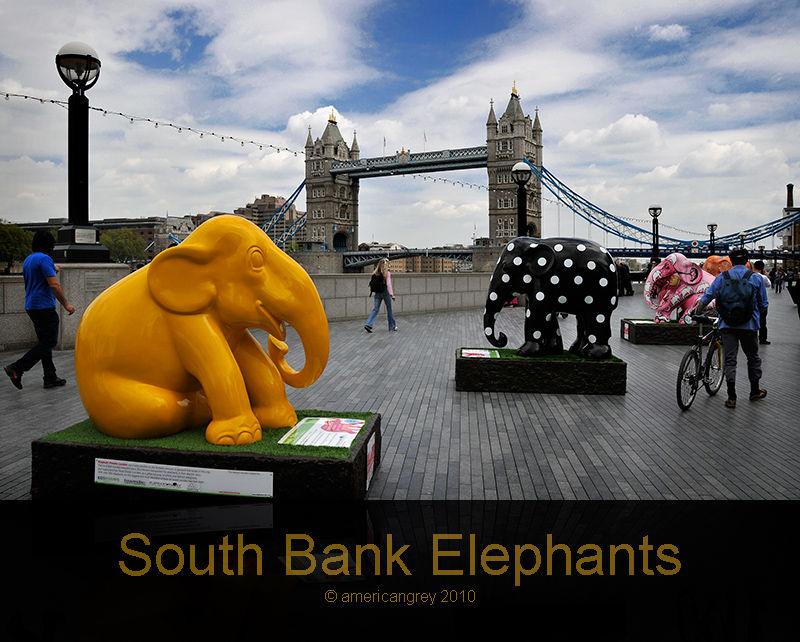 South Bank Elephants