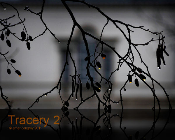 Tracery 2