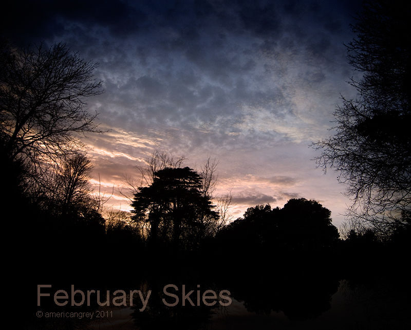 February Skies