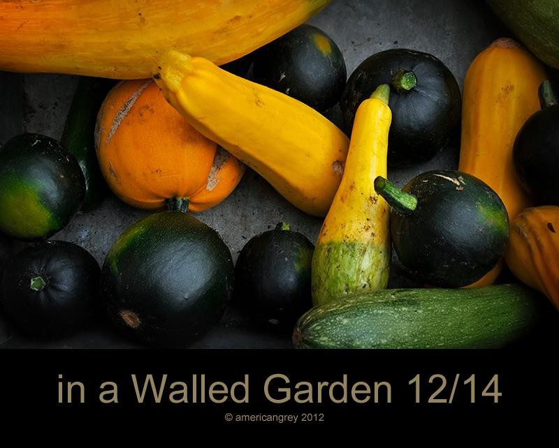 Walled Garden 12/14