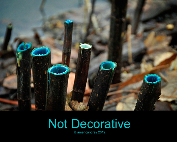 Not Decorative
