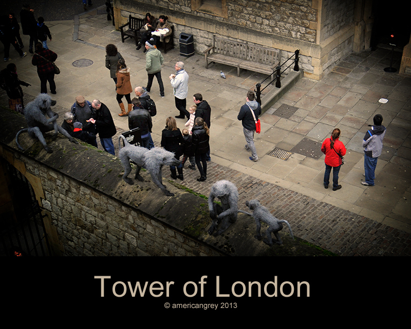 Tower of London  06
