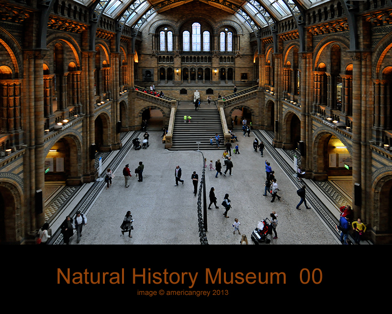 Natural History Museum 00