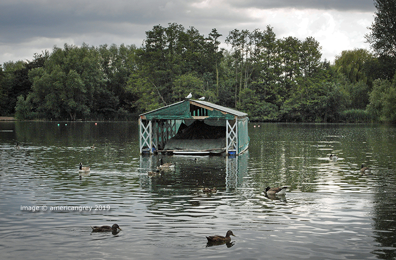 The Boat-shed