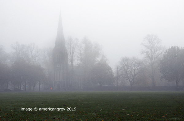 Misty Morn . . 2/2
