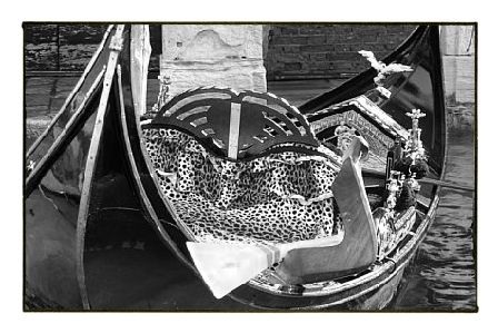 leopard gondola