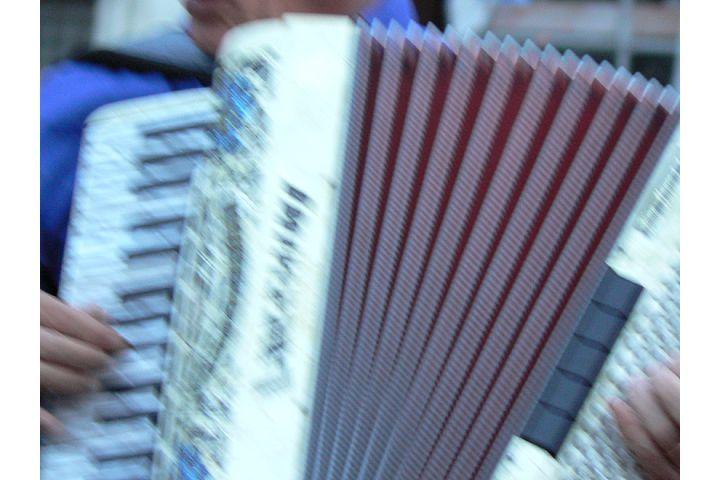 accordian serenade gondola venice
