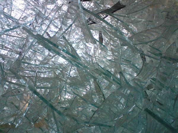 Les Poissons de verre