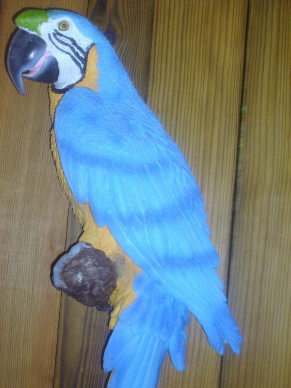 Fake Bird:)