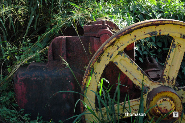 Old yellow discarded mill wheel.