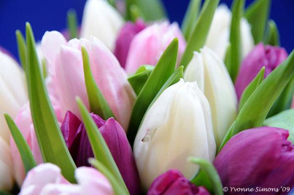 Weekend bouquet