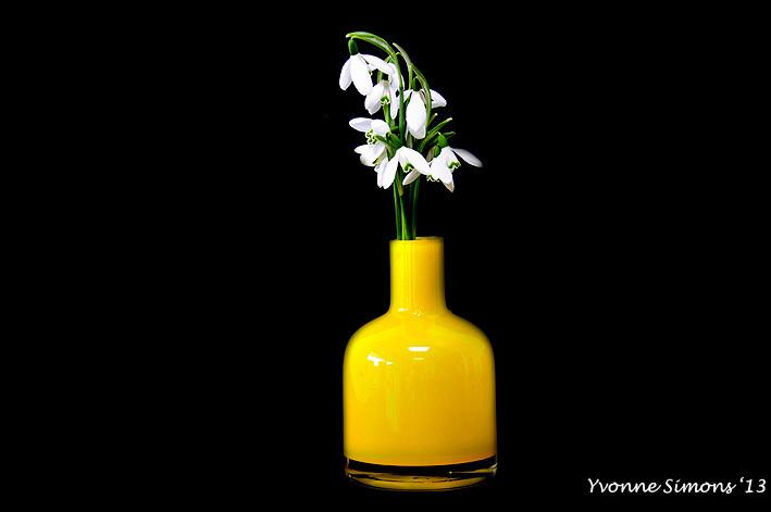 The yellow vase #5